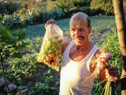 Ahmed Ayad, producteur de légumes bio à Chefchaouen