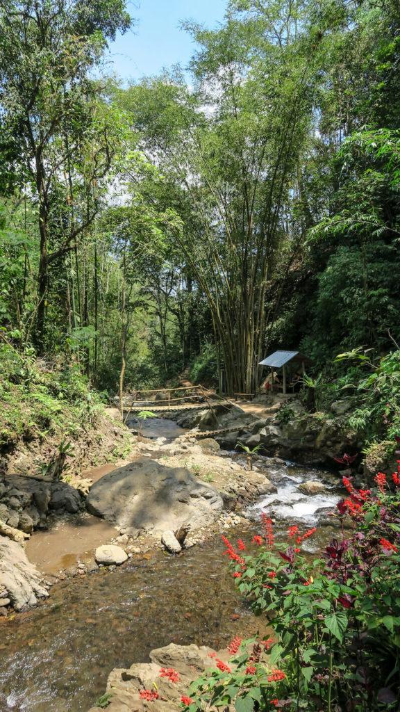 Rivière sur le sentiers des cascades à Munduk