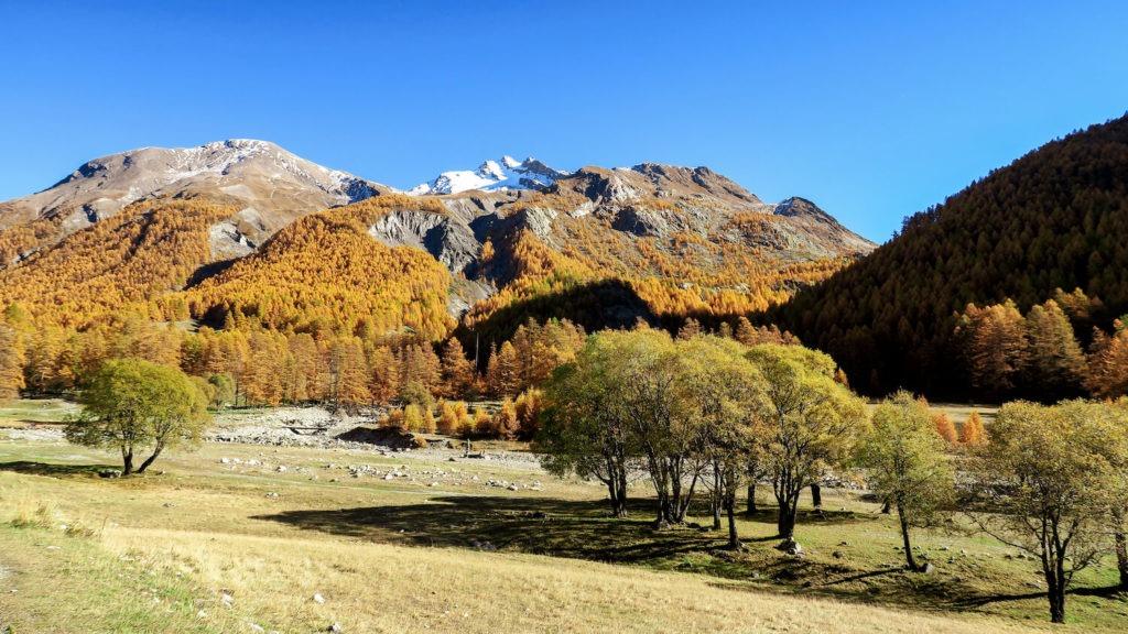 Paysage automnal de Haute-Ubaye avec montagne et forêt aux couleurs orangées