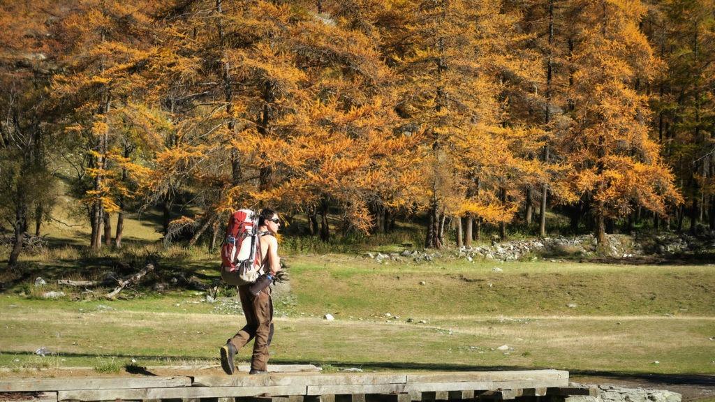 Départ de Maljasset pour une randonnée dans la forêt de mélèzes en Haute-Ubaye
