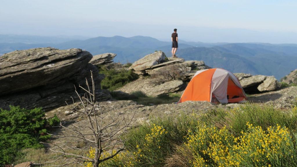 Bivouac sur le bord du plateau du Caroux avec tente et genêts en fleurs