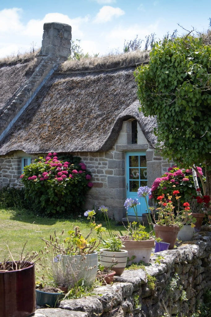 Maison traditionnelle bretonne avec toit de chaume et porte bleue, fleurs en pots
